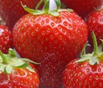 Beating Strawberry Mildew with Garlic (PRESS RELEASE)